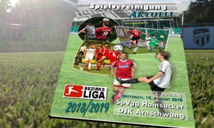 Stadionheft, 5. Spieltag: DJK Arnschwang