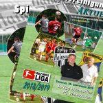 Stadionheft, 12. Spieltag: FC Viehhausen