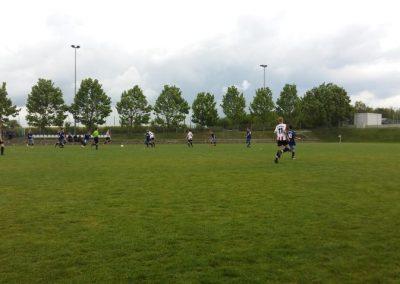 TSV Grossberg 11.5.3